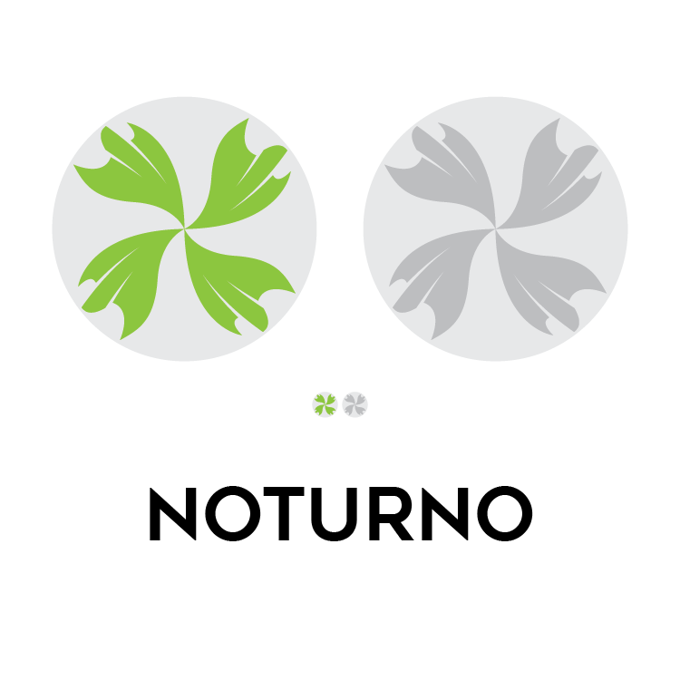 noturno logo